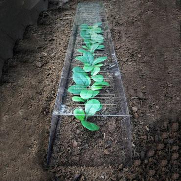 GrowAway<sup>™</sup> Garden Plant Row Cover