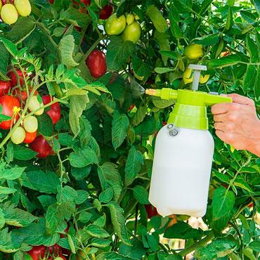 Handheld Garden Sprayer