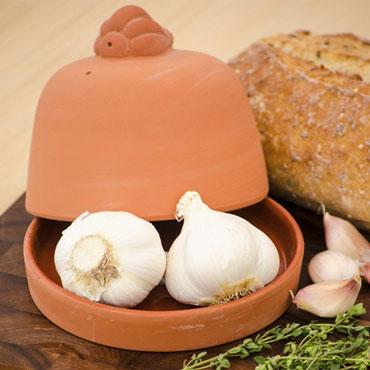 Terra Cotta Garlic Roaster