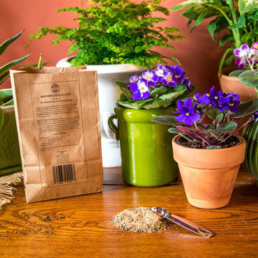 Houseplants Alive!<sup>®</sup>Houseplant Fertilizer