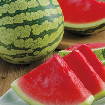 Gurney's<sup>®</sup> Delight Improved Hybrid Watermelon