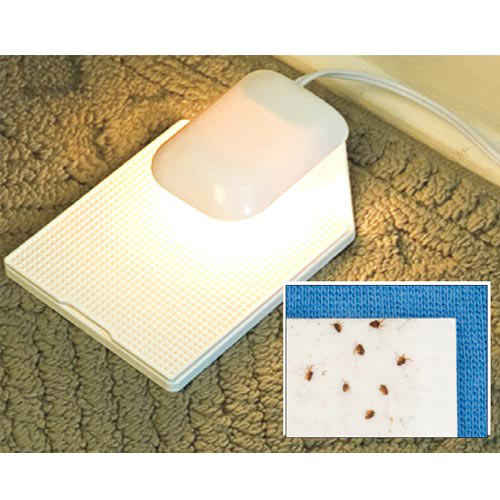Flea Secure™ Light Trap