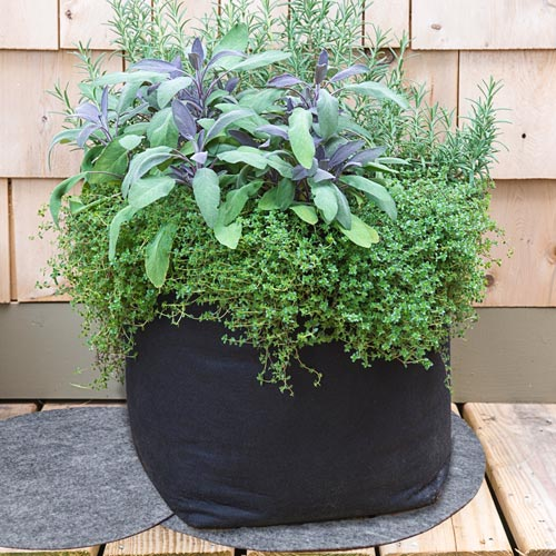 Grow Tub™ Container Mats