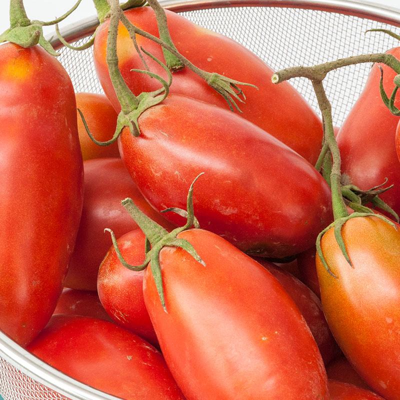 san marzano tomato gardens alive. Black Bedroom Furniture Sets. Home Design Ideas