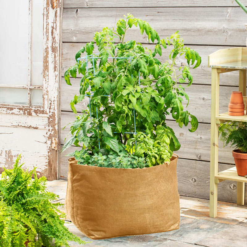 Growing Fruit in Containers on a Deck, You Bet Your Garden: Gardens ...