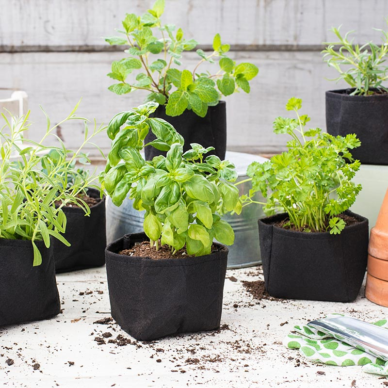 Grow Tub Flower Pots/ Transplant Pots