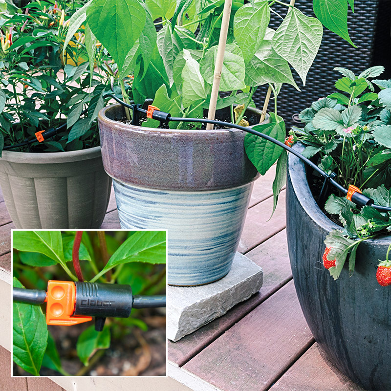 Helpful Products from Gardens Alive Tired of