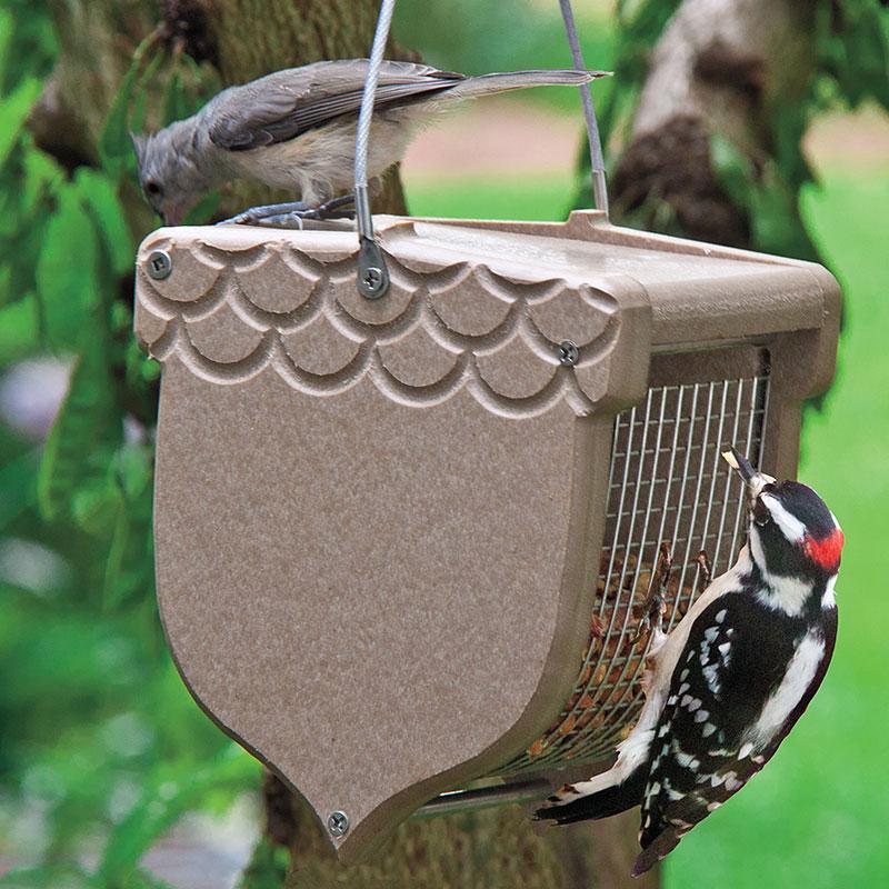 Acorn peanut feeder gardens alive for Acorn feeder