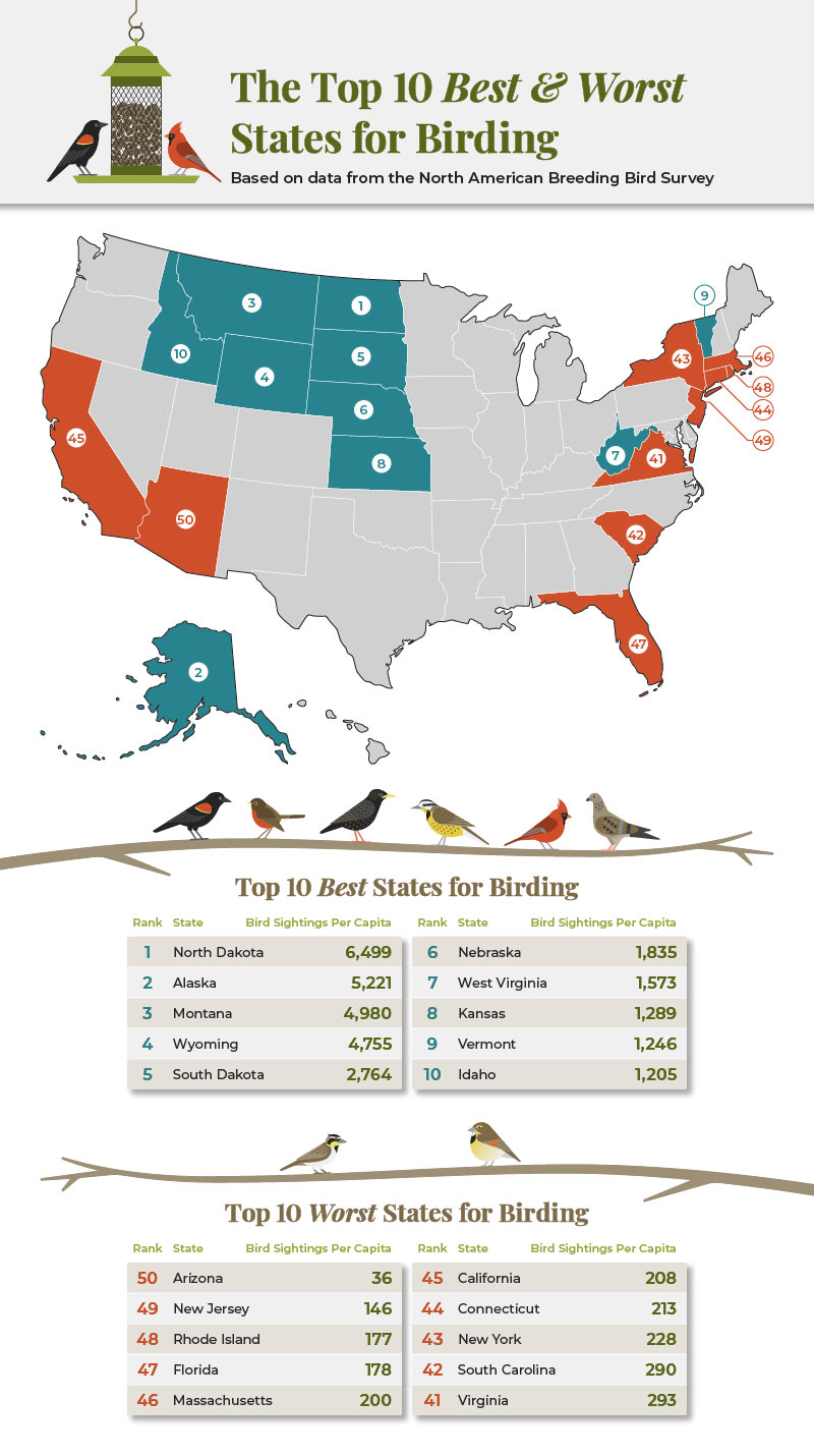 The best and worst states for bird watching