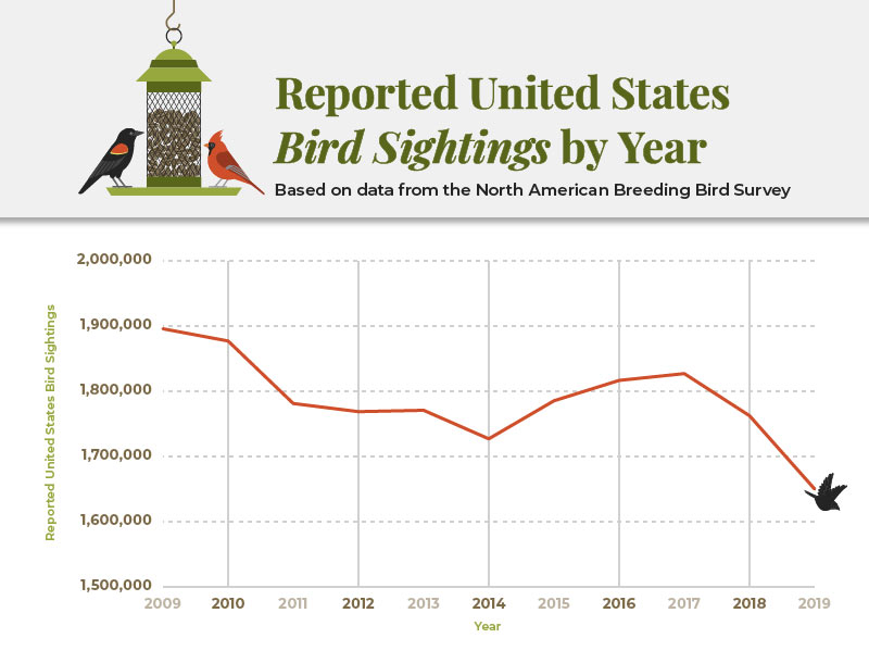 Total number of birds sighted over the years