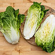 Emiko Hybrid Chinese Cabbage Seed