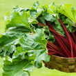 KangaRhu<sup>™</sup> Rhubarb