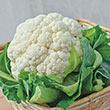 Snow Crown Hybrid Cauliflower Seed