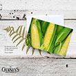 Gurney's<sup>®</sup> Veggie Notecards