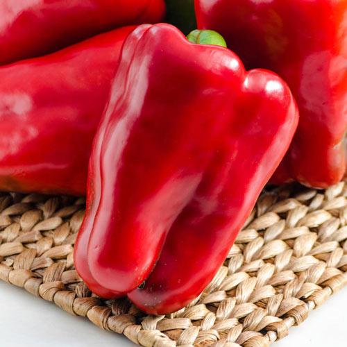 Colossal Hybrid Sweet Pepper