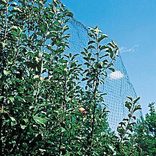 Reusable Garden Netting