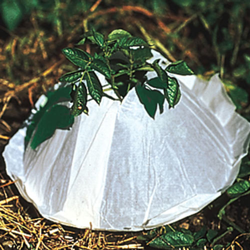 Hot Kaps<sup>®</sup> Frost Protection Domes