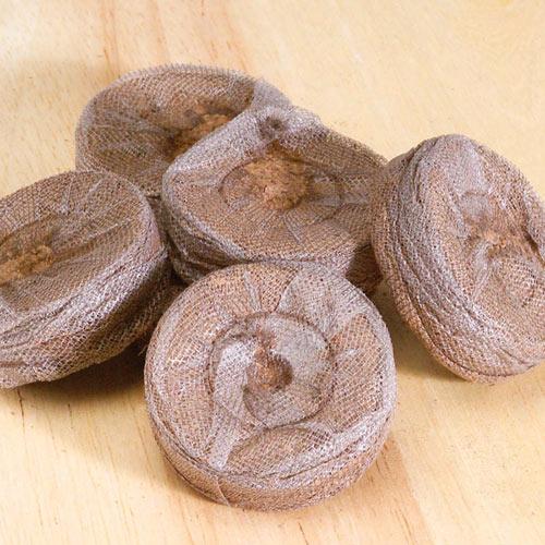 Peat Pellets - Seed Starting