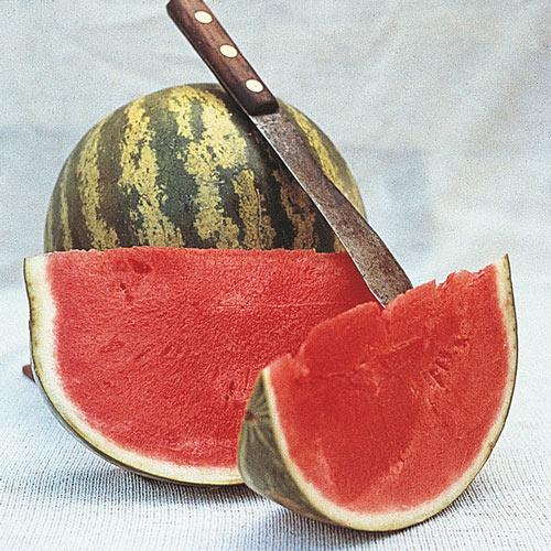 Crimson Sweet Watermelon Seed