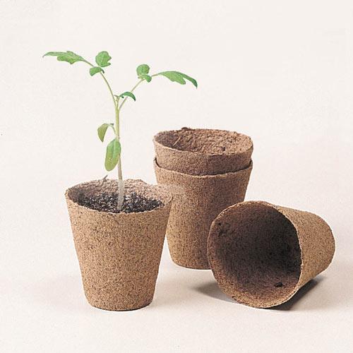Round Peat Transplant Pots