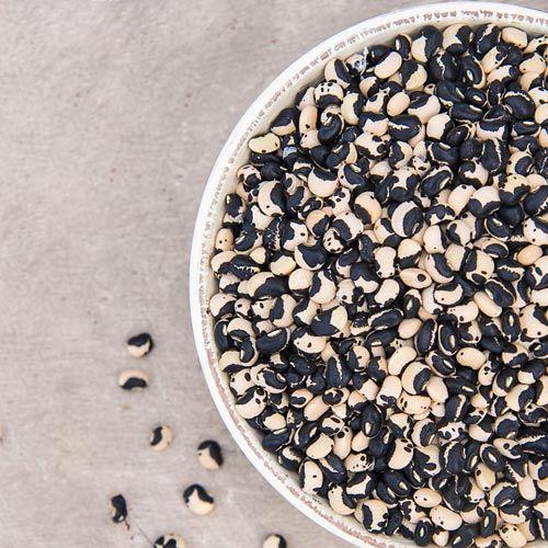 Phenomenal™ Summerpea Seed