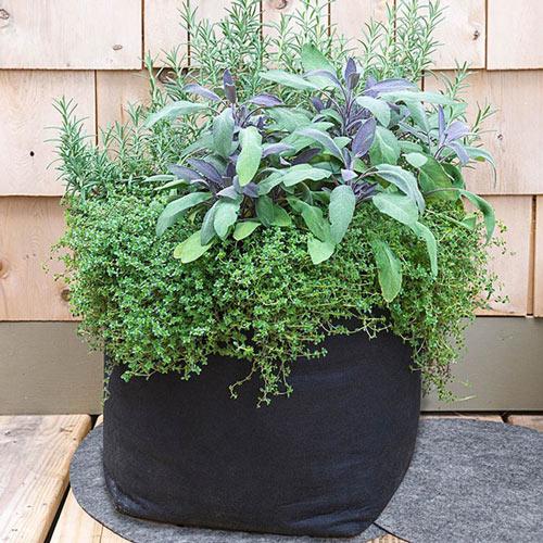 Grow Tub<sup>®</sup> Garden Container Mats