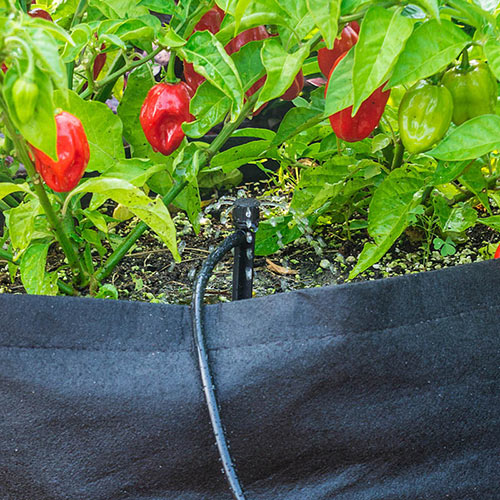 The Dripster™ Drip Irrigation Kit