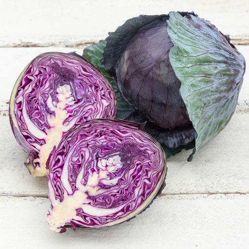Omero Hybrid Cabbage Seed