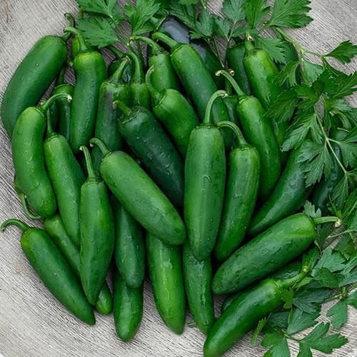 Nadapeno Sweet Pepper