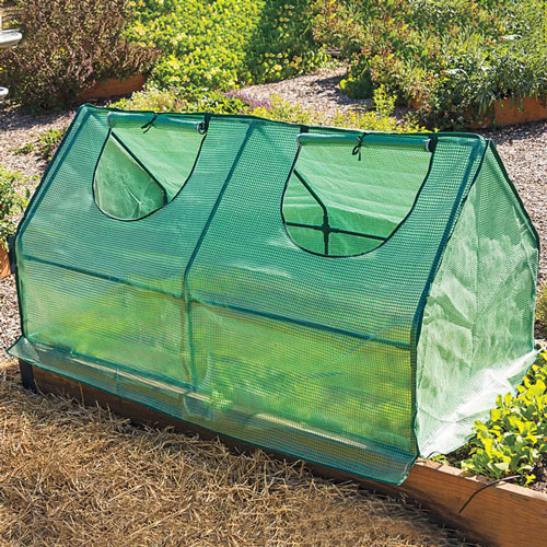 Multi Cloche Cold Frame - Weather Protection