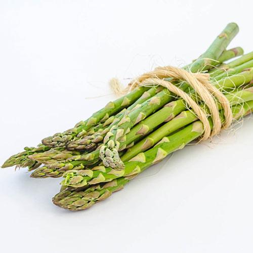 Grande Hybrid Asparagus Plant