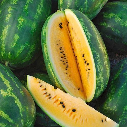 Mountain Sweet Yellow Watermelon Seed