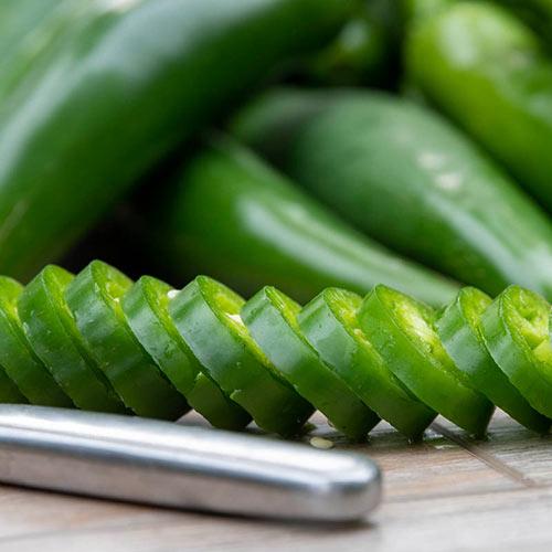 Gurney's Perfect Rings Hybrid Jalapeno Pepper