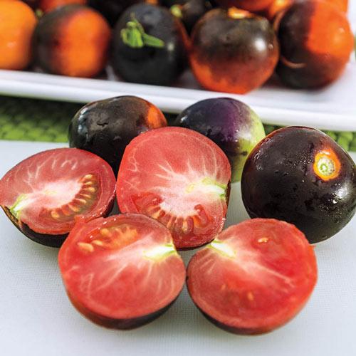 Indigo Ruby Hybrid Tomato