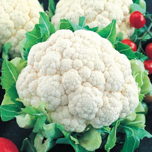 Snowball Cauliflower Seed
