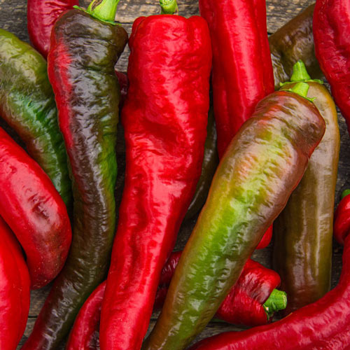 Sugar Blaze™ Hybrid Cayenne Hot Pepper Seed
