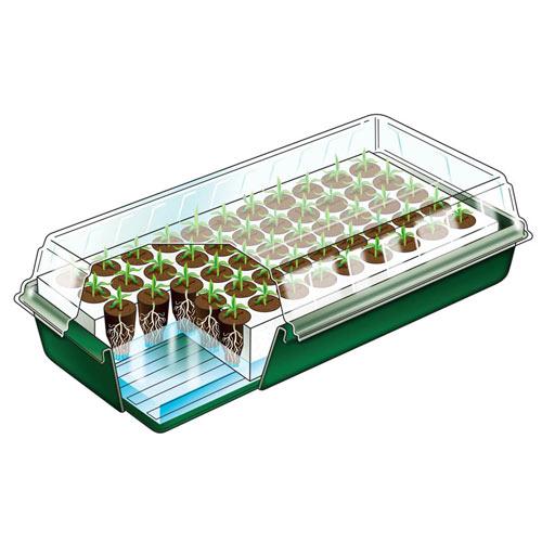 Gurney's Seed Starting Kit