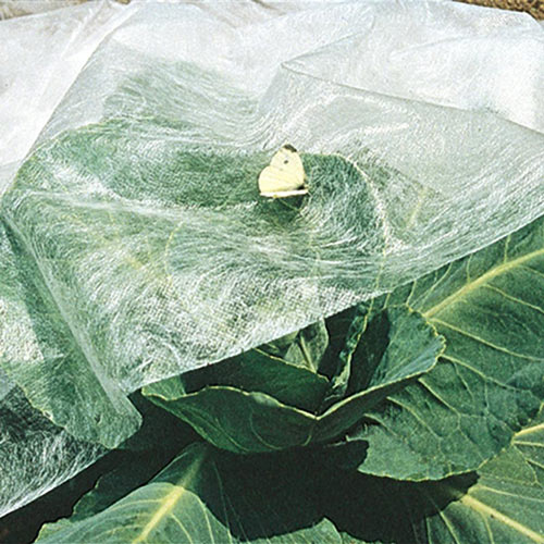 Super-Lite Insect Barrier - Lightweight Row Cover