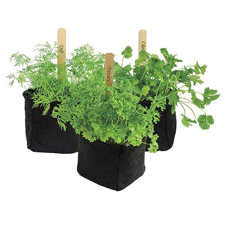 Grow Tub Herb Transplant Pots Henry Field S Seed
