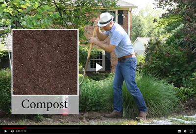 RazzMatazz Planting video