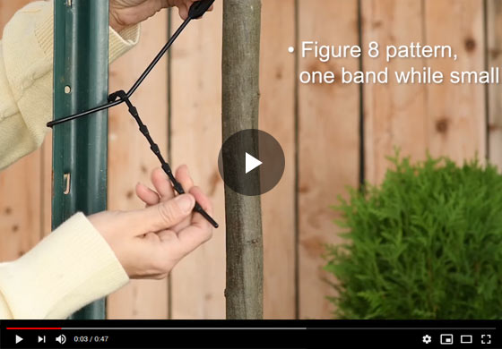 How to use Adjustable Plant Ties Video