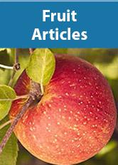Fruits Articles