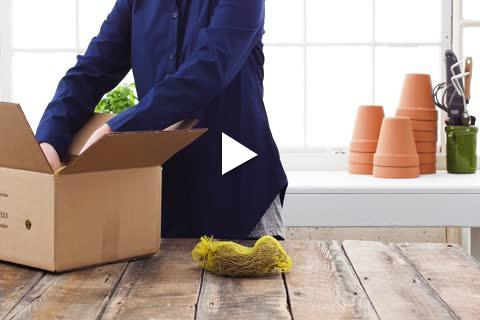 Asparagus - Unboxing