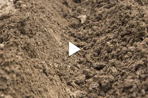 Potatoes - Planting Tips