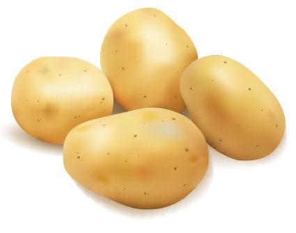 The incredible Potato