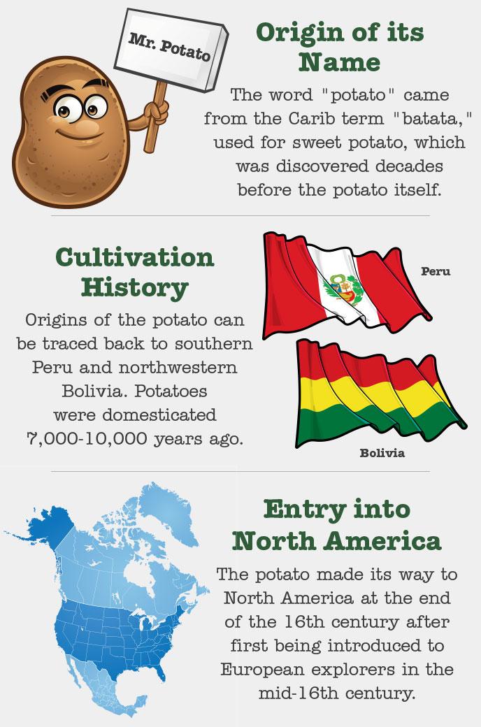 A Brief potato History