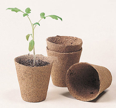 Biodegradable Pots