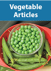 Vegetable Articles