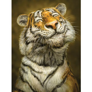 Smiling Tiger 500 Piece Jigsaw Puzzle