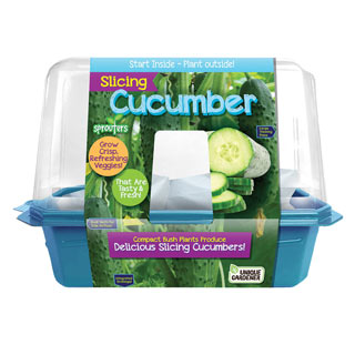 Grow Your Own Cucumbers Plant Kit